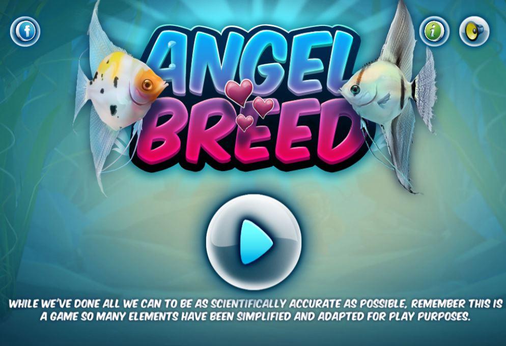 Angel Breed